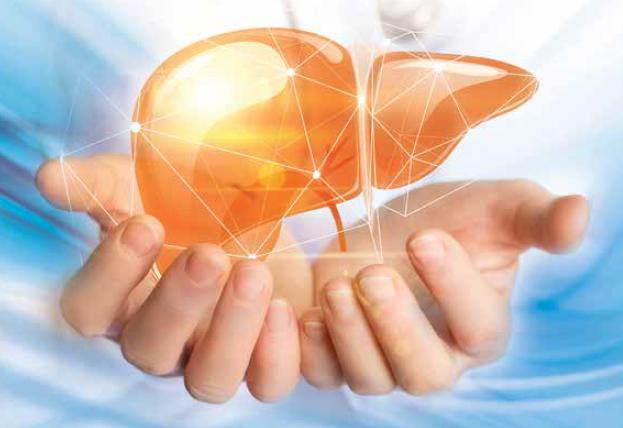 Tečaj – Zatajenje jetre